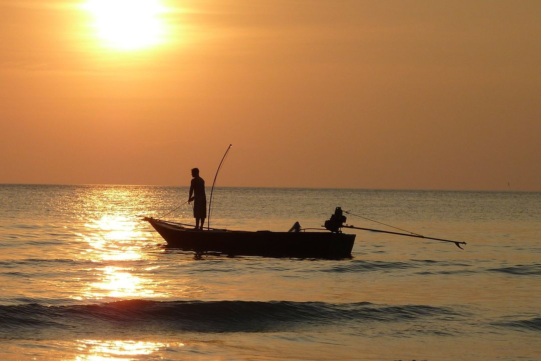 fishing on ocean at sunset
