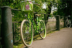 Biking in NSB